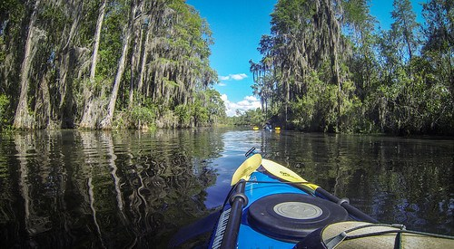 09-10-2016 Okefenokee Swamp with Lowcountry Unfiltered