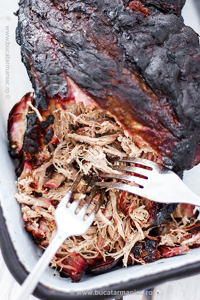 pulled pork9
