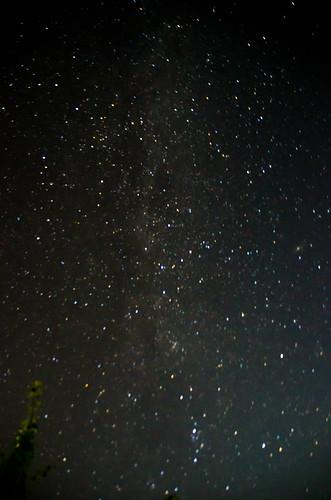 Samish Island Stars-003