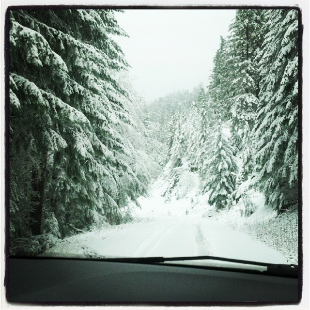 A Weekend in Snow near Stevens Pass • Angela Travels