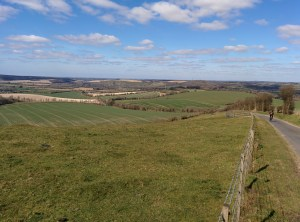 Butser Hill - North View - Evans