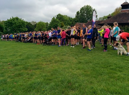 Doggos, and runners lined up for the start