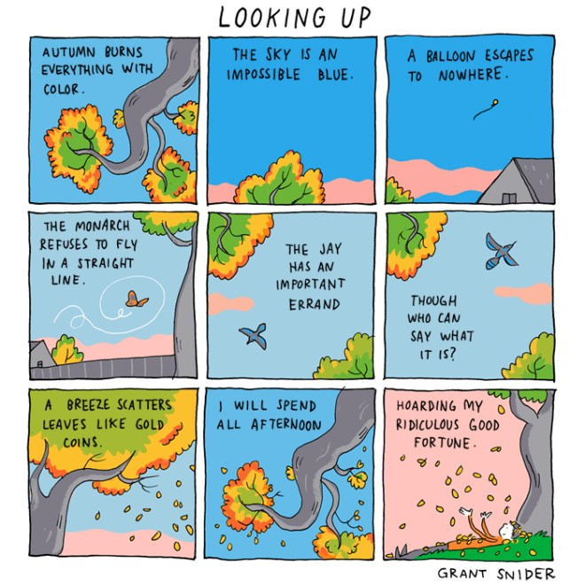 LookingUp-blog