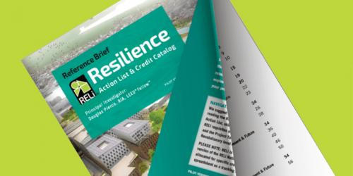 Explore the RELi Action List + Credit Catalog Reference Brief online Flipbook