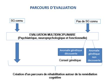 Maladies génétiques, parcours de réhabilitation autour de la remédiation cognitive