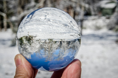 Snow Globe (2 of 31)