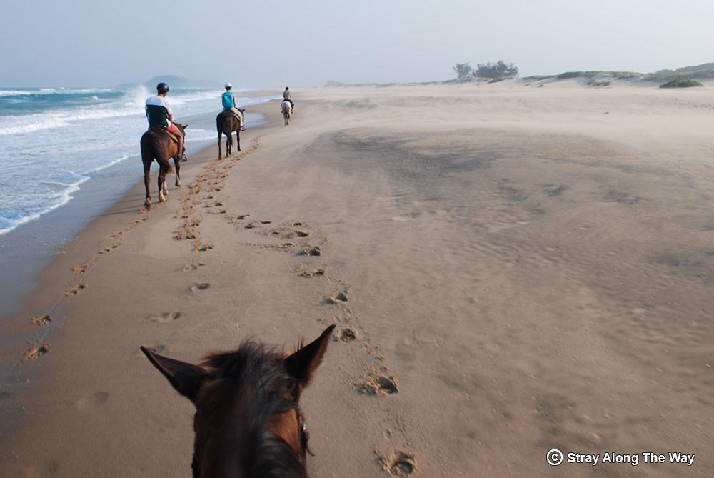 isimangaliso-horse-beach