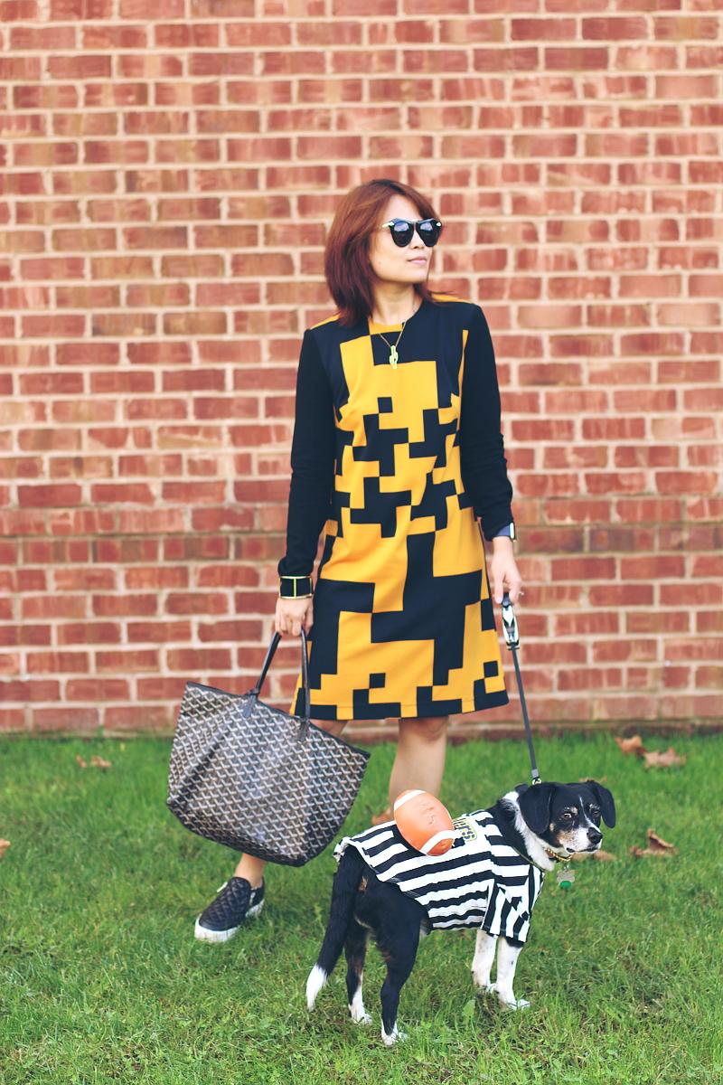 black-yellow-dress-dog-football-referee-costume-4