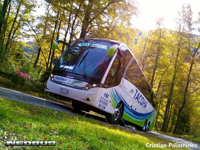 Bus 160 Termas Huife 3