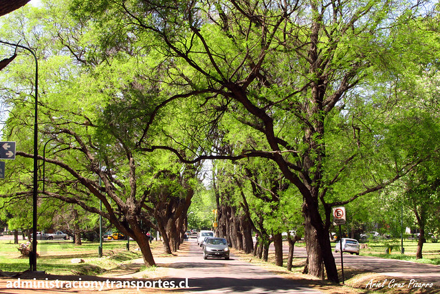 Parque San Martín (Mendoza)