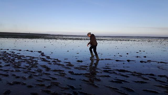 Wadlopen - Texel (4)