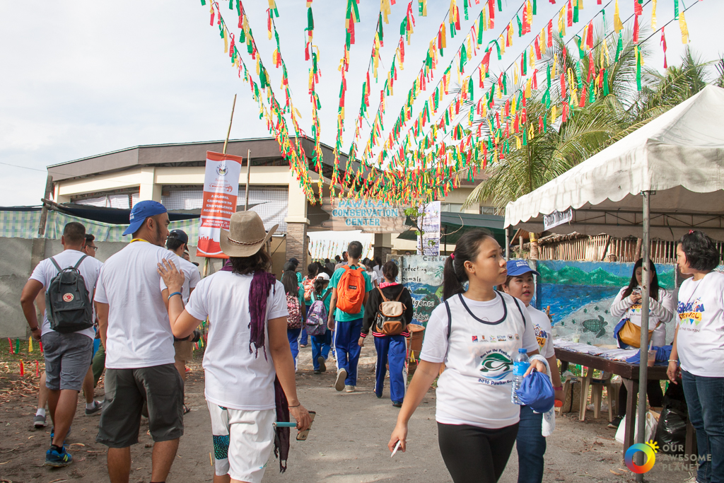Pawikan Festival