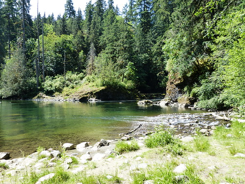 Things to do on Vancouver Island: Stamp River Provincial Park
