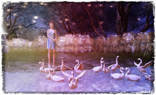 """Every lake belongs to the quietness desired by the swans."""