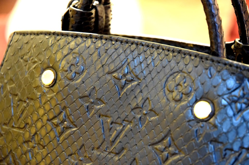 Louis Vuitton Exotic Bag