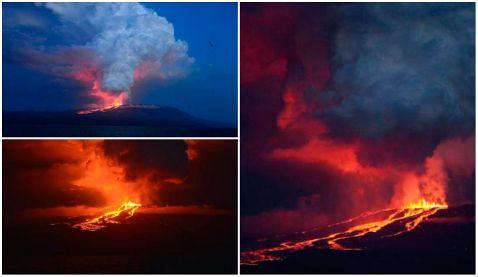 Wolf, el volcán en Galápagos, despierta tras 33 años y hace erupción