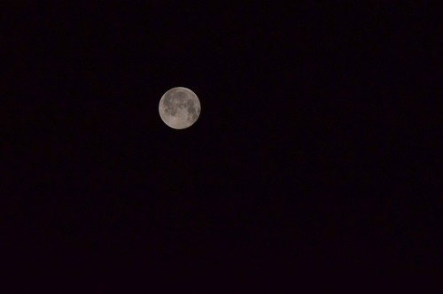Firsts The Moon