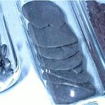 Selenium metallicum