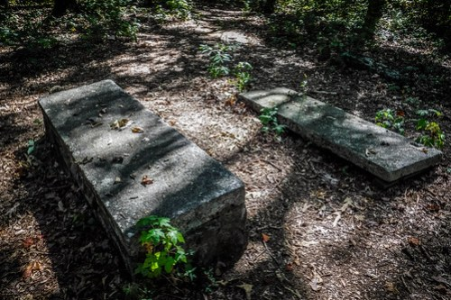 Harrisburg Plantation Cemetery-005