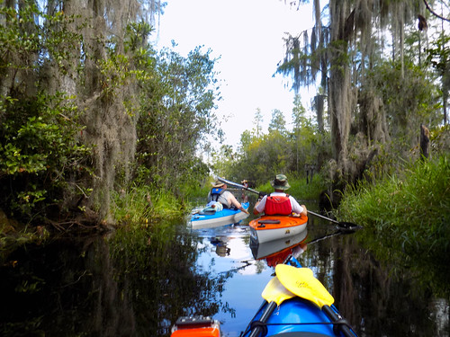 Lowcountry Unfiltered at Okefenokee-260
