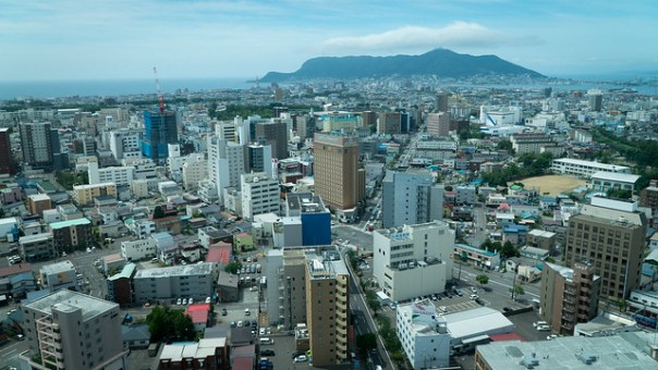 View of Hakodate from Goryokaku Tower