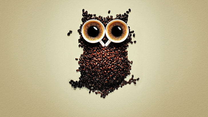 HD wallpaper: coffee funny cups owls coffee beans 1920x1080 ...