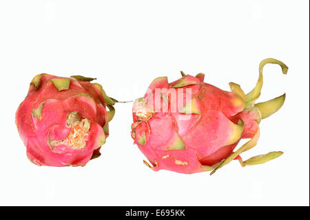 Pitahaya or Dragonfruit (Hylocereus undatus), fruits - Stock Photo