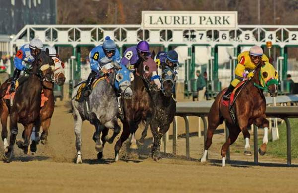 Laurel Park cancels live racing Saturday – Horse Racing ...
