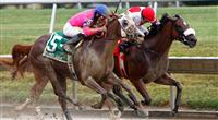 Blind Luck and Havre De Grace at Delaware Park