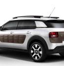 Zijn de airbumps te prikkelend voor Citroën?