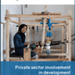 Private sector involvement in development: What impact on gender norms? (ALIGN Report, 2018)