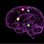 The Power of Storytelling and How it Affects Your Brain