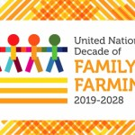 Webinar: Launch of the Family Farming at the Heart of Sustainable Food Systems in Africa ( UNDFF, July 21, 2021)