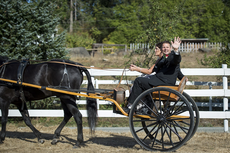 Wild love for this chic country wedding with a horse-drawn carriage entrance