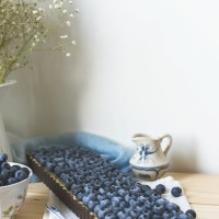 Raw Blueberry Coconut Tart + Nut Crust