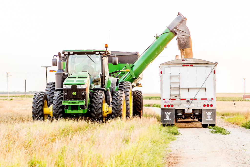 6-9-16 HPH Texas Harvest Photos - Laura-9