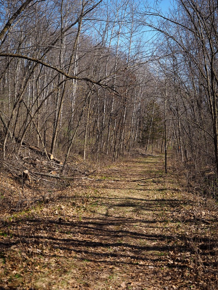 Hiking in Afton State Park - Due Midwest