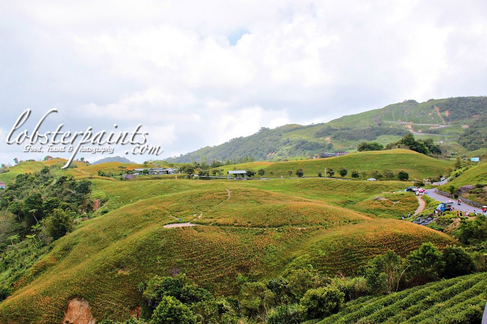 15 September 2012: Sixty Stones Mountain 六十石山 | Hualien, Taiwan