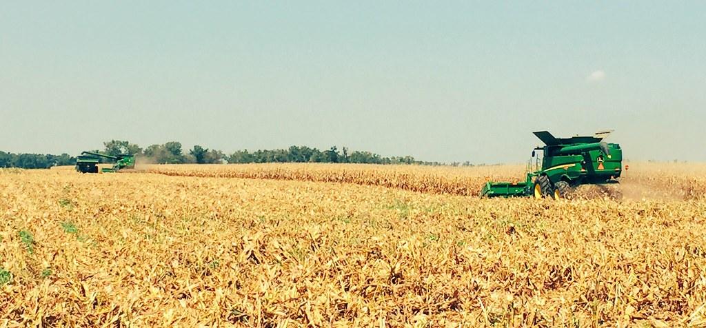 HPH-2016-Corn Harvest (Ryan)