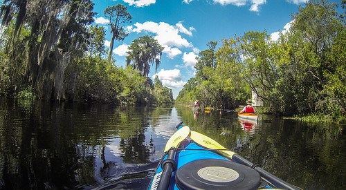 Lowcountry Unfiltered at Okefenokee-80