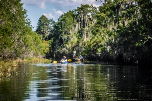 Lowcountry Unfiltered at Okefenokee-174
