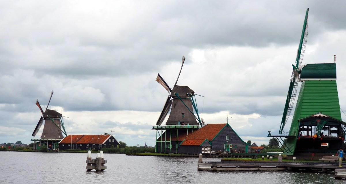 Amsterdam con Perro, Amsterdam con Mascotas Amsterdam con perro Visitar Amsterdam con perro 29397505796 7c725a4c9e o