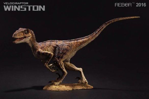 03 Raptor Rebor 2016 'Winston'