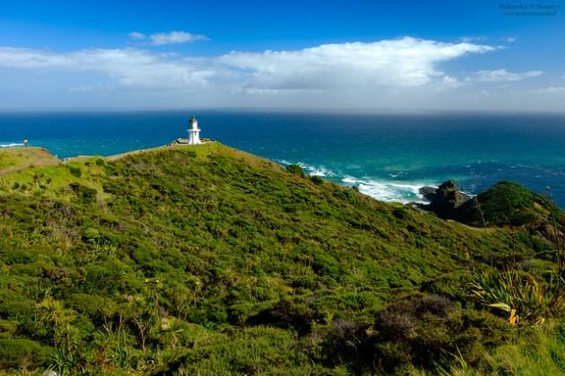Nowa Zelandia - Cape Reinga