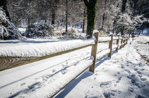 Greenville Snow-002