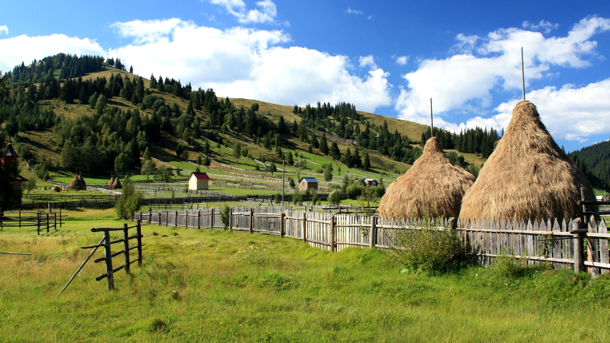 "Carlibaba - Bucovina - Romania ""Viste agresti"""