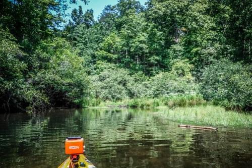 Lake Oolenoy with Ken Cothran-43