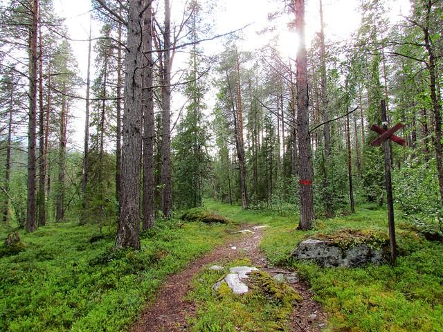 Kungsleden 2016 - Kvikkjokk to Jakkvik
