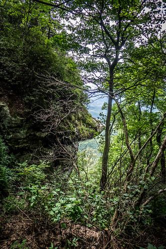 Caesar's Head State Park-008