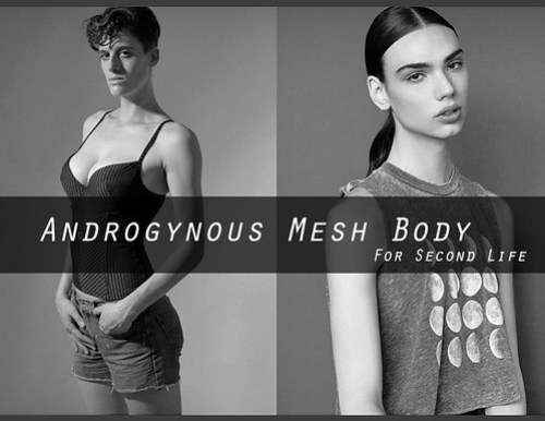 "Survey for Second Life ""Androgynous Mesh Body"""